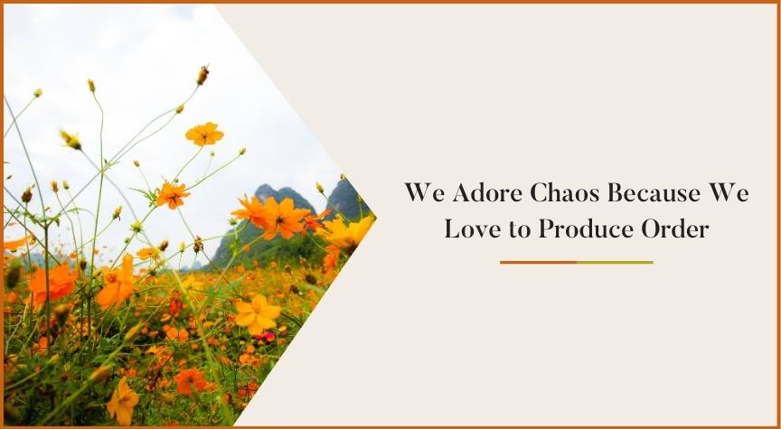 We Adore Chaos Because We Love to Produce Order