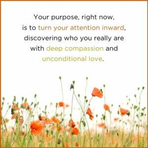 Your Purpose Is To Turn Your Attention Inward With Compassion And Love